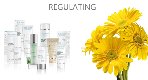 correct conceal and prevent blemishes