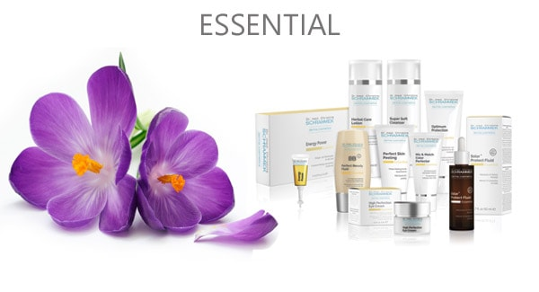 beauty care essentials for every day use